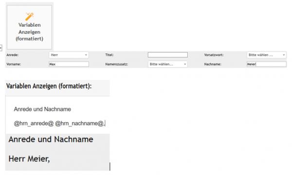 "PLS Element ""Variablen Anzeigen (formatiert)"""